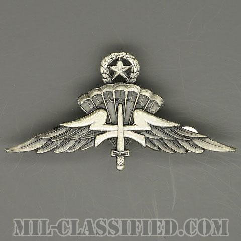 自由降下章(マスター)試作品(Freefall Parachutist Badge, HALO, Jumpmaster, Prototype)[カラー/1980s/燻し銀/バッジ/1点物]の画像