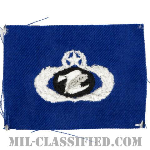 情報管理章 (マスター)(Information Management/Administration Badge, Master)[カラー/空軍ブルー生地/パッチ]の画像