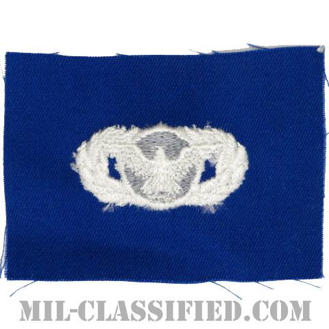 警備機能章 (ベーシック)(Security Police Functional Badge, Basic)[カラー/空軍ブルー生地/パッチ]の画像