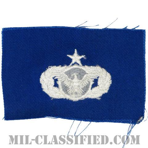 警備機能章 (シニア)(Security Police Functional Badge, Senior)[カラー/空軍ブルー生地/パッチ]の画像
