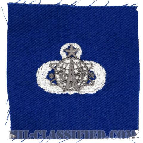 宇宙ミサイル章 (マスター)(Space and Missile Badge, Master)[カラー/空軍ブルー生地/パッチ]の画像