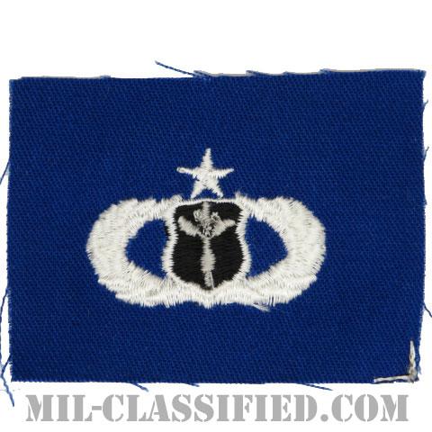 気象章 (シニア)(Meteorologist Badge, Senior)[カラー/空軍ブルー生地/パッチ]の画像
