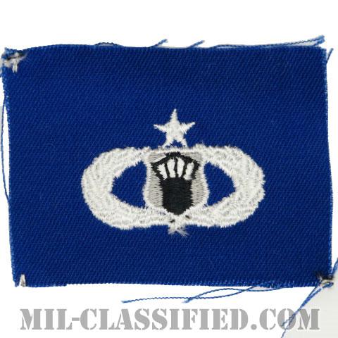 航空交通管制章 (シニア)(Air Traffic Control Badge, Senior)[カラー/空軍ブルー生地/パッチ]の画像