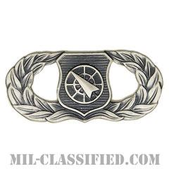 兵器指揮章 (ベーシック)(Weapons Director Badge, Basic)[カラー/燻し銀/バッジ]の画像