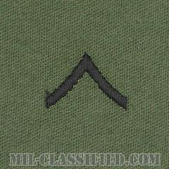 一等兵(Private Second Class (PV2))[サブデュード/階級章/パッチ/ペア(2枚1組)]の画像