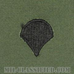 特技兵(Specialist (SPC))[サブデュード/階級章/パッチ/ペア(2枚1組)]の画像