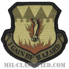 第317空輸航空団(317th Airlift Wing)[OCP/メロウエッジ/ベルクロ付パッチ]の画像