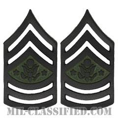 陸軍最先任上級曹長(Sergeant Major of the Army (SMA))[サブデュード(ブラックメタル)/階級章/バッジ/ペア(2個1組)]の画像