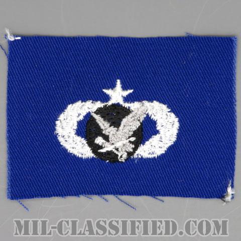 補給・燃料章 (シニア)(Supply and Fuels Badge, Senior)[カラー/空軍ブルー生地/パッチ]の画像