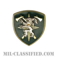 中欧連合軍(Allied Forces Central Europe)[カラー/クレスト(Crest・DUI・DI)バッジ]の画像