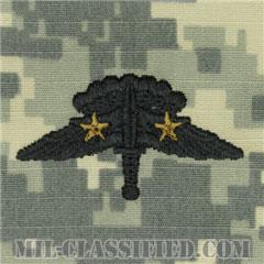 戦闘自由降下章 (ベーシック) 降下2回(Combat Military Freefall Parachutist, Basic, Two Jump)[UCP(ACU)/パッチ]の画像