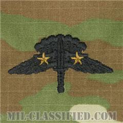 戦闘自由降下章 (ベーシック) 降下2回(Combat Military Freefall Parachutist, HALO, Basic, Two Jump)[OCP/パッチ]の画像