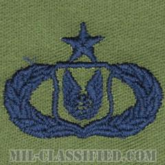 作戦支援章 (シニア)(Operations Support Badge, Senior)[サブデュード/ブルー刺繍/パッチ]の画像