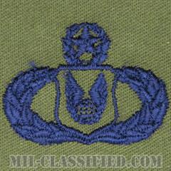 作戦支援章 (マスター)(Operations Support Badge, Master)[サブデュード/ブルー刺繍/パッチ]の画像