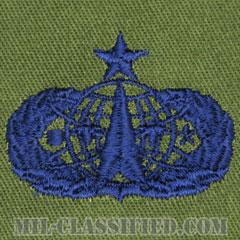 宇宙ミサイル章 (シニア)(Space and Missile Badge, Senior)[サブデュード/ブルー刺繍/パッチ]の画像
