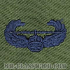 空中突撃章 (エアアサルト)(Air Assault Badge)[サブデュード/ブルー刺繍/パッチ]の画像