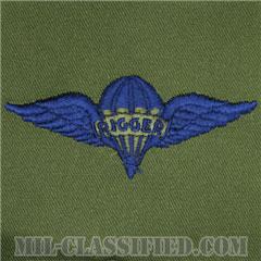 パラシュート整備士 (パラシュートリガー)(Parachute Rigger Badge)[サブデュード/ブルー刺繍/パッチ]の画像