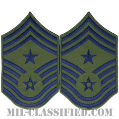 部隊先任最上級曹長(Command Chief Master Sergeant)[サブデュード/メロウエッジ/空軍階級章(1991-)/Large(男性用)/パッチ/ペア(2枚1組)]の画像