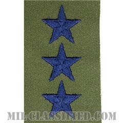 中将(Lieutenant General (LTG))[サブデュード/空軍階級章(肩用)/パッチ/ペア(2枚1組)]の画像