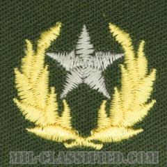 仮想敵部隊(対抗部隊)ハンビーズ章(シルバー)(Opposing Force (OPFOR), HAMBY'S Outstanding Performance Award)[カラー/パッチ]の画像