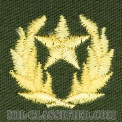 仮想敵部隊(対抗部隊)ハンビーズ章(ゴールド)(Opposing Force (OPFOR), HAMBY'S Outstanding Performance Award)[カラー/パッチ]の画像