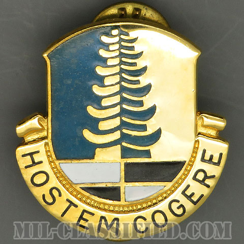 第319軍事情報大隊(319th Military Intelligence Battalion)[カラー/クレスト(Crest・DUI・DI)バッジ/1960s/中古1点物]の画像