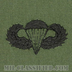 空挺章 (ベーシック)(Parachutist Badge, Basic)[サブデュード/パッチ]画像