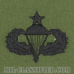 空挺章 (シニア)(Parachutist Badge, Senior, Senior)[サブデュード/パッチ]の画像