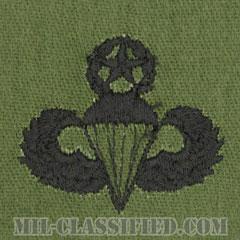 空挺章 (マスター)(Parachutist Badge, Master, Master)[サブデュード/パッチ]画像
