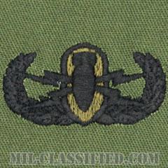 爆破物処理章 (ベーシック) (Explosive Ordnance Disposal (EOD), Badge, Basic)[サブデュード/パッチ]の画像