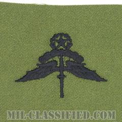 自由降下章 (マスター) (Military Freefall Parachutist Badge, HALO, Jumpmaster)[サブデュード/パッチ]の画像