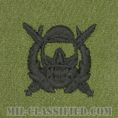 特殊作戦潜水員章(Diver Badge, Special Operations Diver)[サブデュード/パッチ]の画像