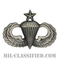 空挺章 (シニア)(Parachutist Badge, Senior, Senior)[カラー/燻し銀/バッジ]の画像