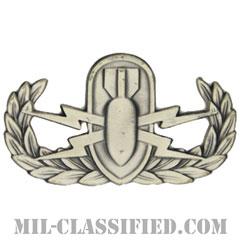 爆破物処理章 (ベーシック) (Explosive Ordnance Disposal (EOD), Badge, Basic)[カラー/燻し銀/バッジ]の画像