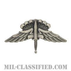 自由降下章 (ベーシック) (Military Freefall Parachutist Badge, HALO, Basic)[カラー/燻し銀/バッジ]の画像
