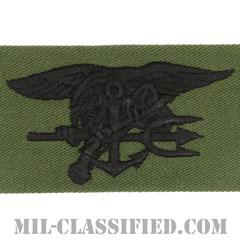 Special Warfare (SEAL)[サブデュード/生地テープパッチ]の画像