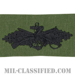 Seabee Combat Warfare Specialist[サブデュード/生地テープパッチ]の画像