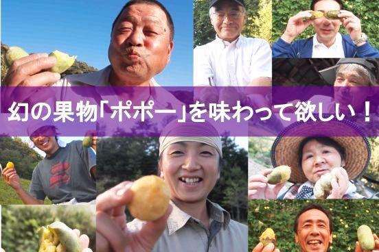 【放牧】 幻のフルーツポポーとカップソフトクリームセット10個入り(ポポー×6、カップソフト×4)の画像