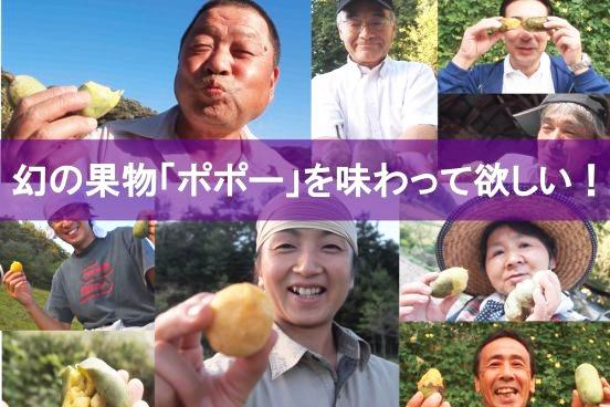 【放牧】 幻のフルーツポポーとカップソフトクリームセット10個入り(ポポー×6、カップソフト×4)画像