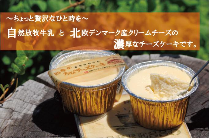 【自然放牧生乳】 四季のちびチーズケーキ画像