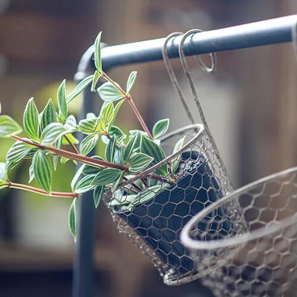 【N6】ガーデンポケット アンティークアイアンワイヤー フック付き(S/L) 画像