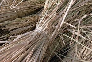 自然栽培 わら 天日干し 〆縄、納豆、マルチ用の画像