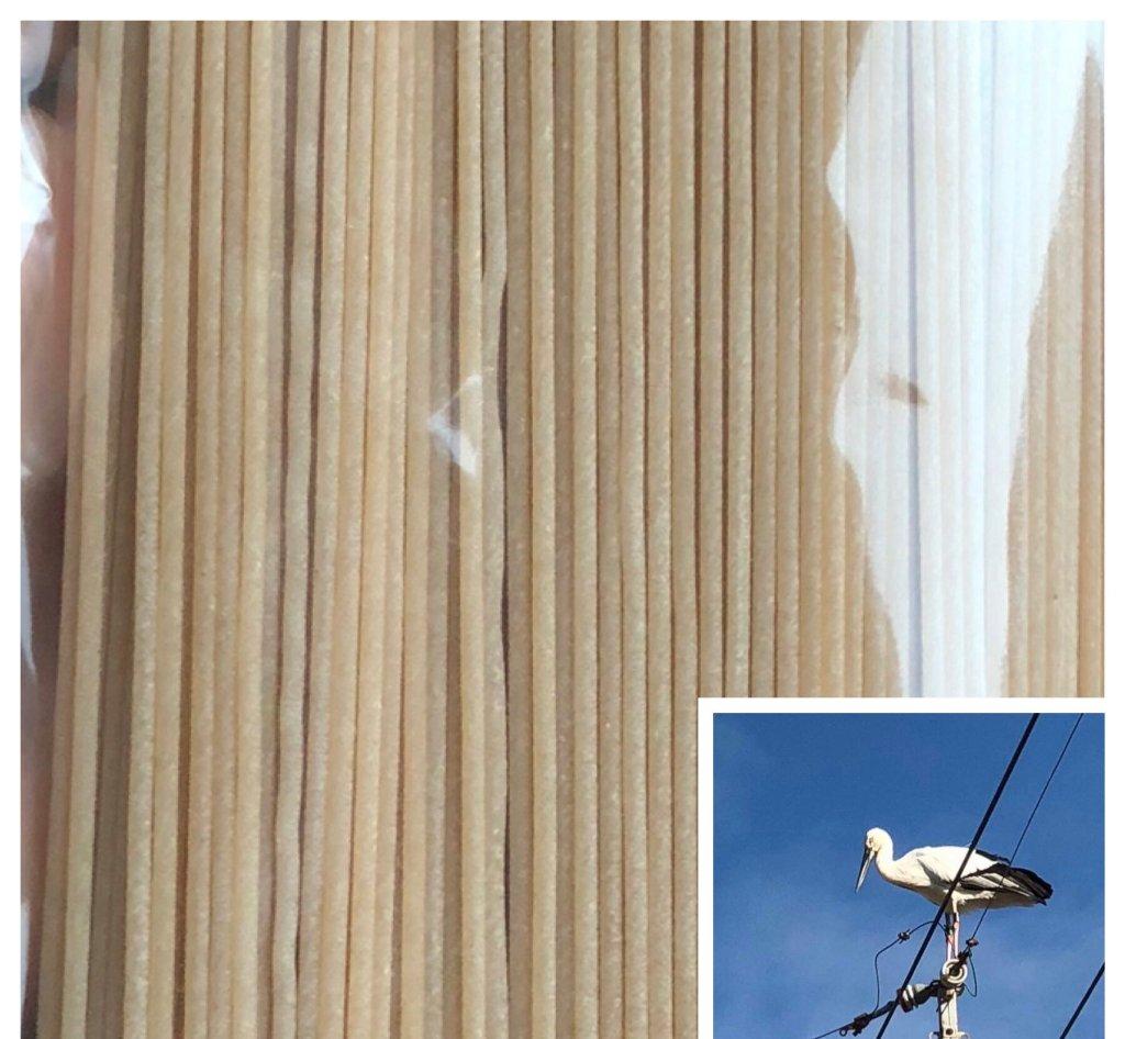 コウノトリが来る畑の古代小麦で作った世界一のパスタ(3ぶつき)の画像