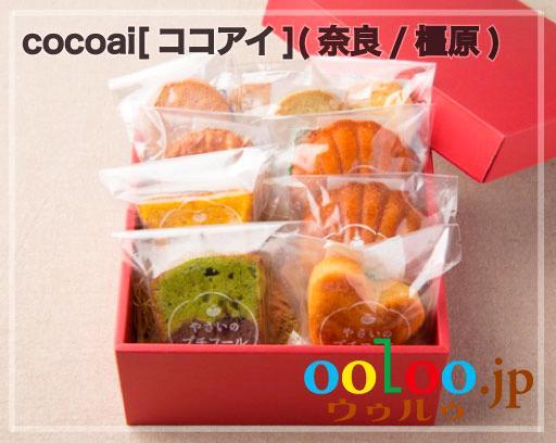 野菜のプチフールギフト10(野菜焼き菓子詰め合わせ)   野菜菓子工房ココアイ[cocoai](奈良/橿原)画像