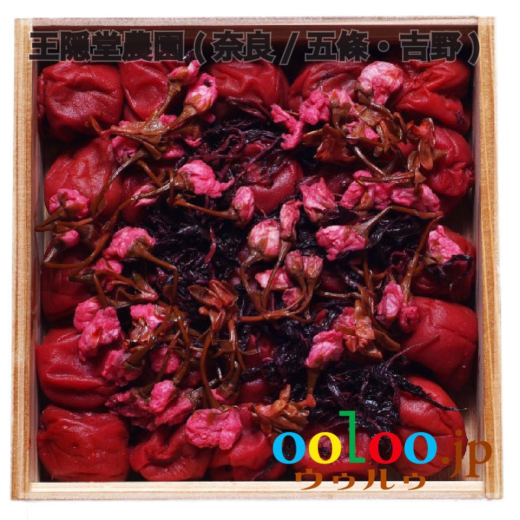 さくら梅干 500g 杉箱入りギフト | 王隠堂農園(奈良/五條・吉野)画像