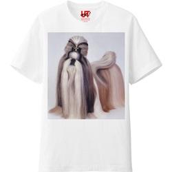 オリジナルTシャツ(ASLAN W)ベイシックの画像