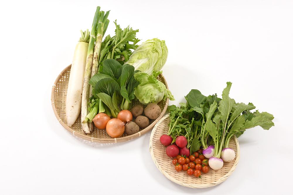 もぎたて新鮮!おいしさと思いやりが詰まった旬の野菜セットM画像