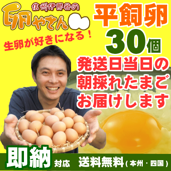 ■自動継続タイプ■平飼い卵30個画像