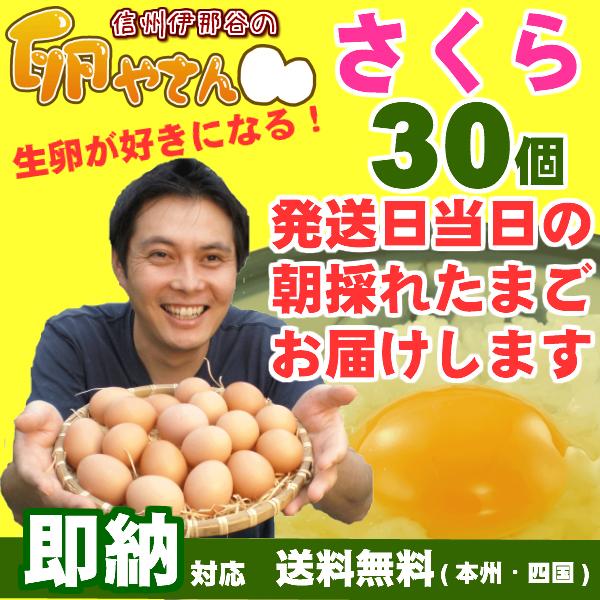 さくら卵30個