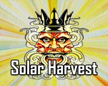 【SOLAR HARVEST】(30ml) KING OF THE CLOUD画像